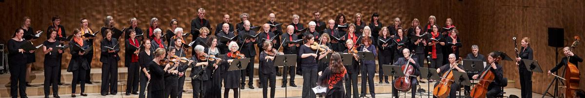 Lange Nacht des Singens 2018 in der Elbphilharmonie (Foto: Claudia Hoehne)
