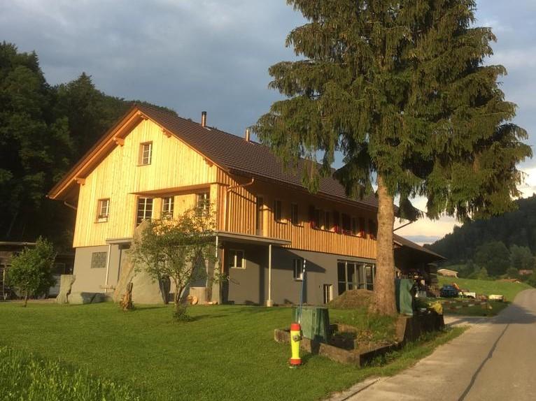 Neubau Holz hundert