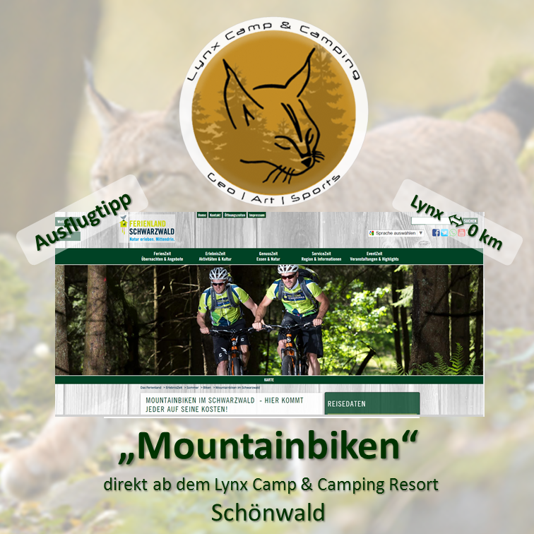 lynx camp welcome