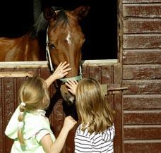 beheizen Tierhaltung Pferdesolarium Stallheizung Melkstand