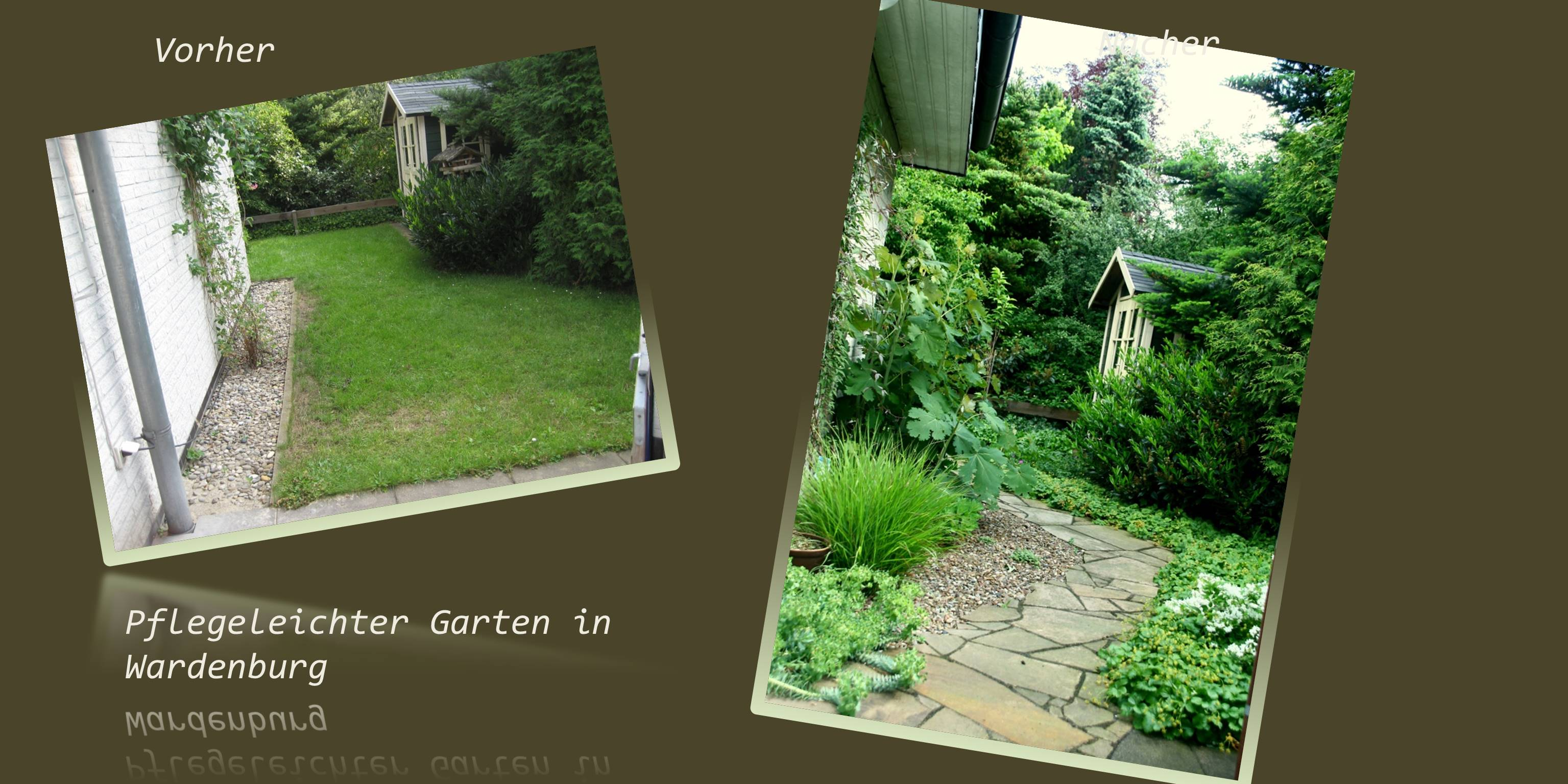 Neu Pflegeleichter Garten Design