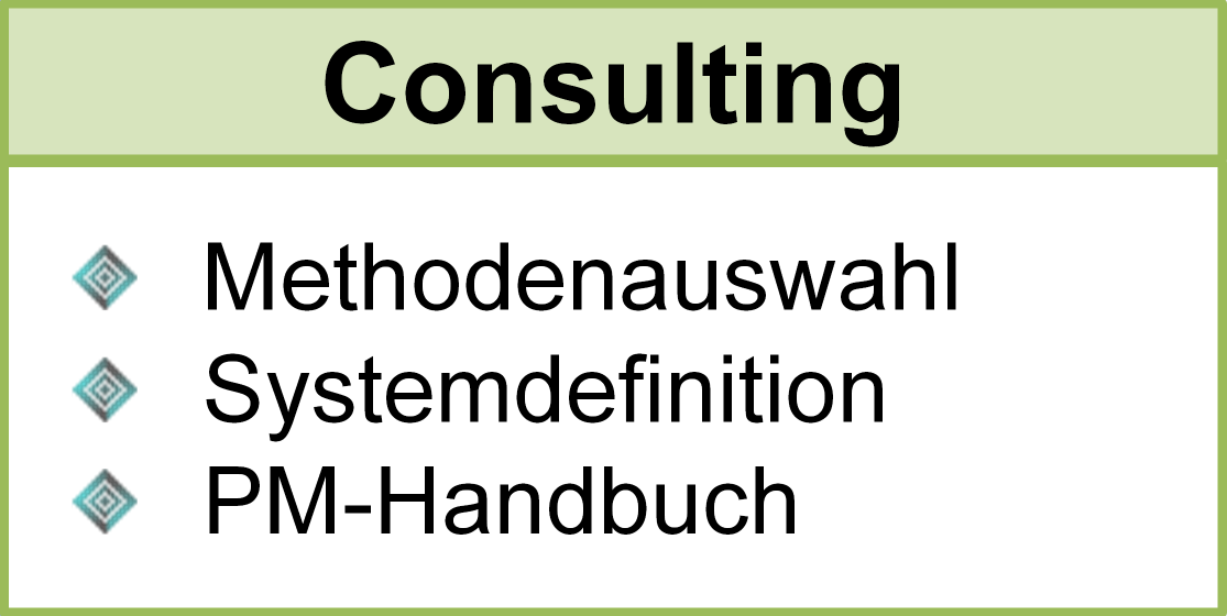 Consulting, Methodenauswahl, Systemdefinition, PM-Handbuch