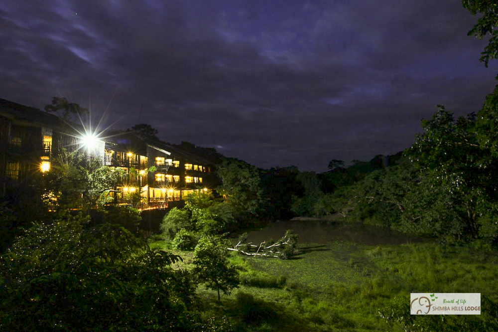 Shimba Rainforest Lodge Kenya