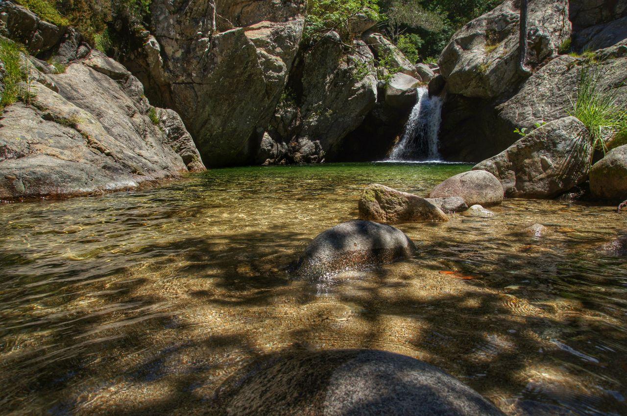 Korsische Badegumpe