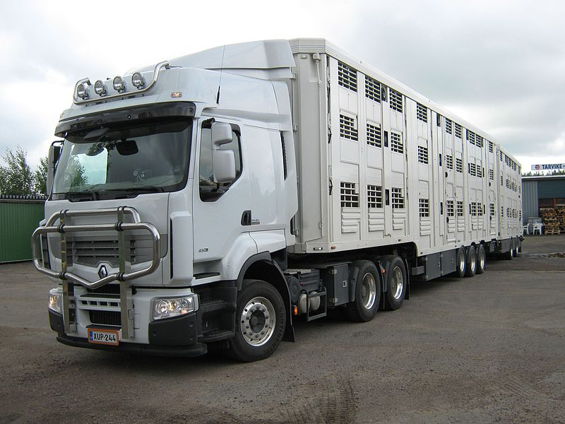 800px-Renault_animal_transport_truck.jpg