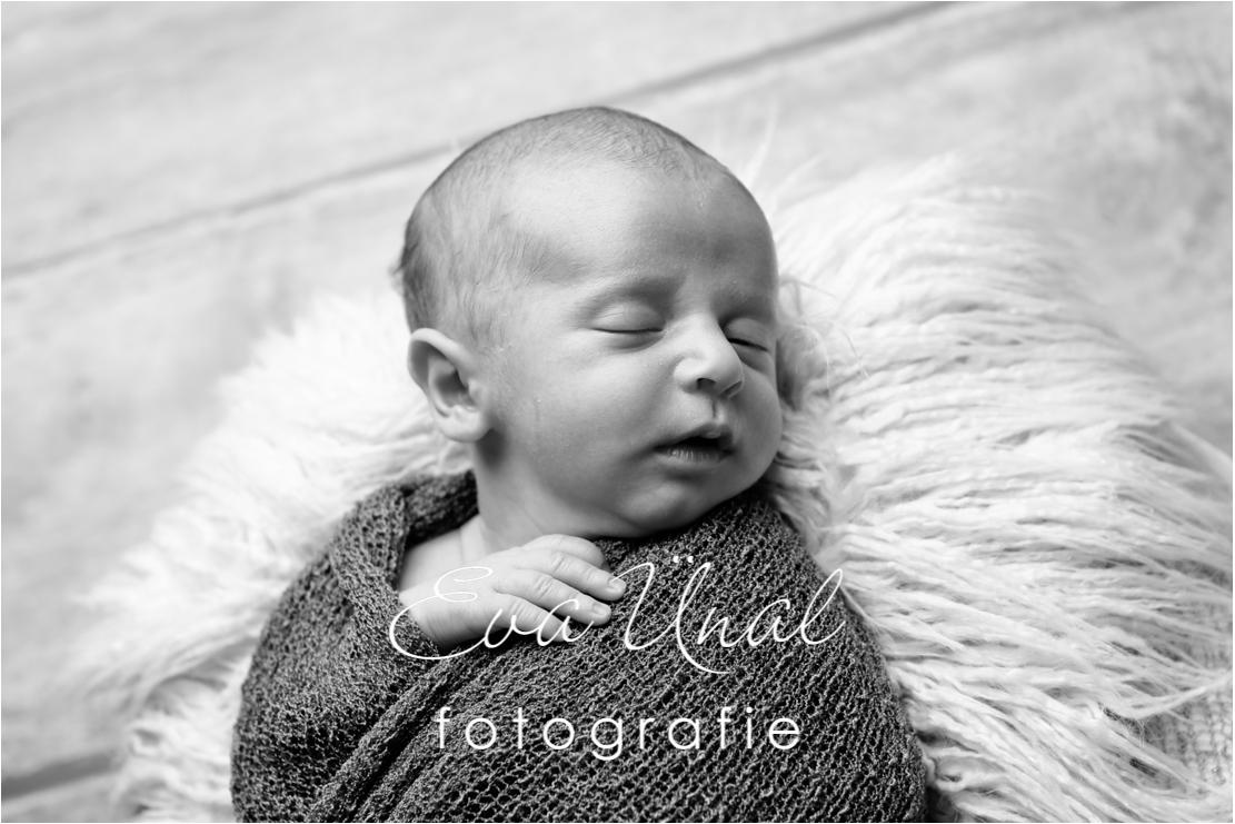 Newborn_Babyfotografie_Waldshut_009jpg