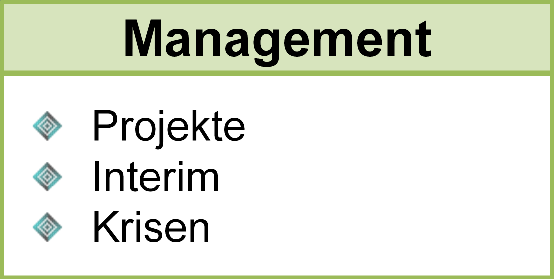 Management, Projekte, Interim, Krisen